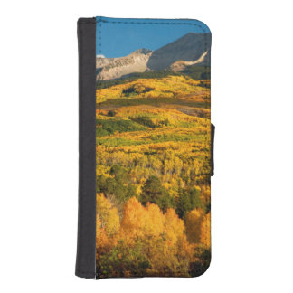 USA, Colorado, Gunnison National Forest iPhone SE/5/5s Wallet Case