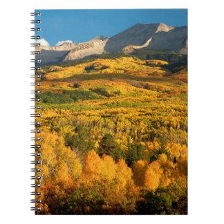 USA, Colorado, Gunnison National Forest Notebooks
