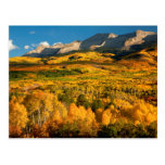 USA, Colorado, Gunnison National Forest Postcard