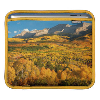USA, Colorado, Gunnison National Forest Sleeves For iPads