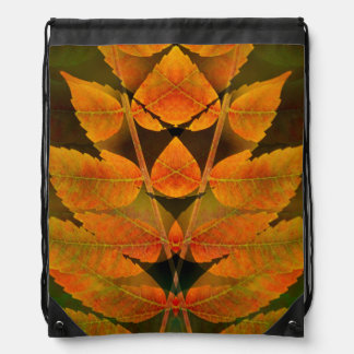 USA, Colorado, Lafayette. Autumn sumac montage Drawstring Bag