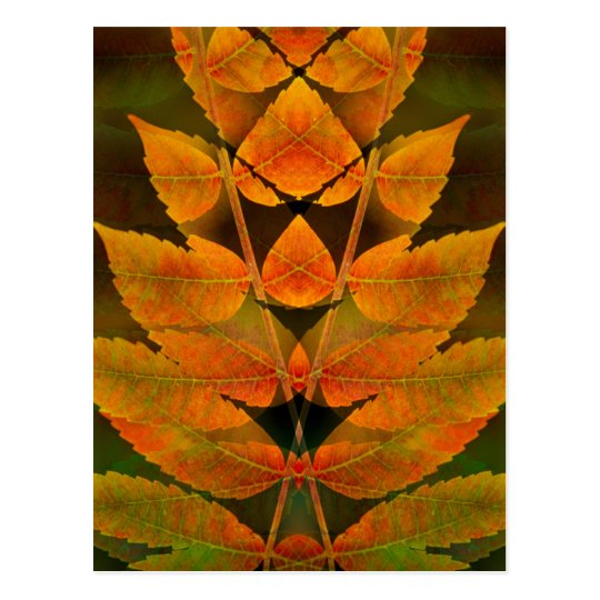 USA, Colorado, Lafayette. Autumn sumac montage Postcard
