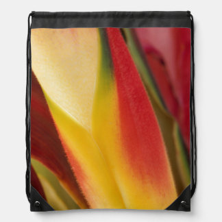 USA, Colorado, Lafayette, heliconia close-up Drawstring Bag