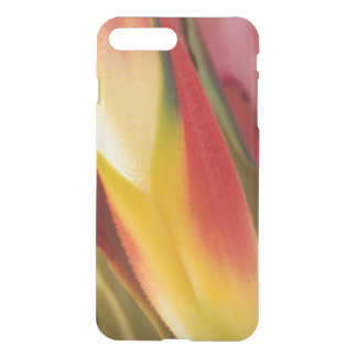 USA, Colorado, Lafayette, heliconia close-up iPhone 8 Plus/7 Plus Case