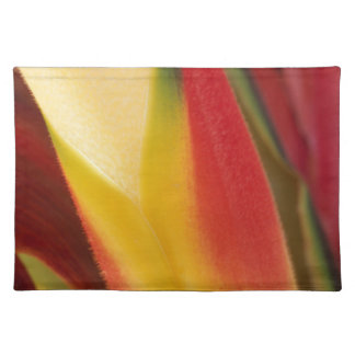 USA, Colorado, Lafayette, heliconia close-up Placemat