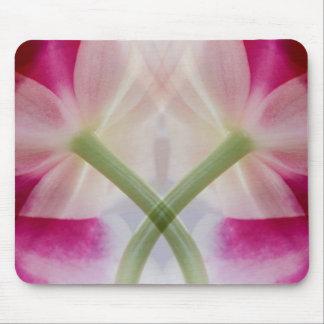 USA, Colorado, Lafayette. Orchid montage Mouse Mat
