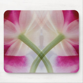 USA, Colorado, Lafayette. Orchid montage Mouse Pad