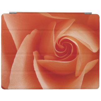 USA, Colorado, Lafayette. Peach rose close-up iPad Cover