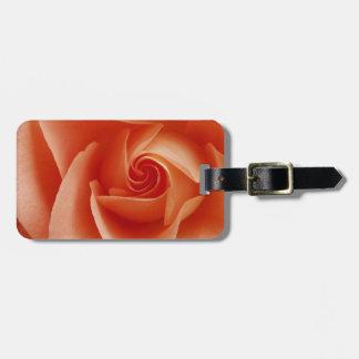 USA, Colorado, Lafayette. Peach rose close-up Luggage Tag