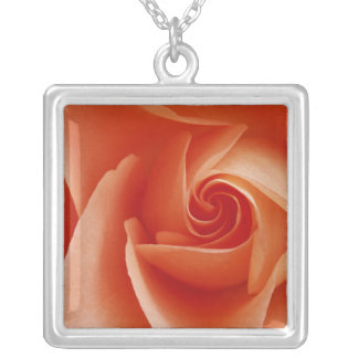 USA, Colorado, Lafayette. Peach rose close-up Silver Plated Necklace