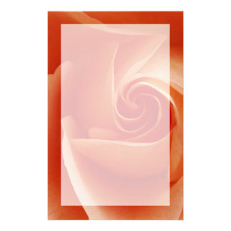 USA, Colorado, Lafayette. Peach rose close-up Stationery