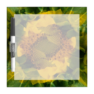 USA, Colorado, Lafayette. Sunflower montage Dry Erase Board