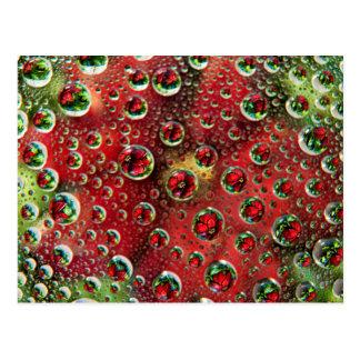 USA, Colorado, Lafayette. Water bubbles on glass 3 Postcard