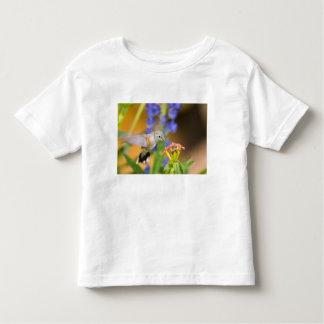 USA, Colorado, Lake County, Leadville. Female Toddler T-Shirt