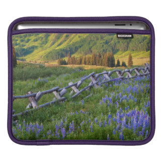 USA, Colorado. Lupines and split rail fence iPad Sleeve