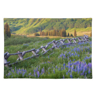 USA, Colorado. Lupines and split rail fence Placemat