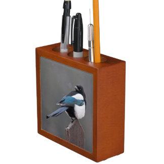 USA, Colorado, Magpie In Estes Park Pencil/Pen Holder
