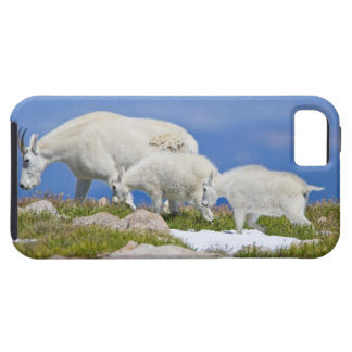 USA, Colorado, Mount Evans. Close-up of female Case For The iPhone 5
