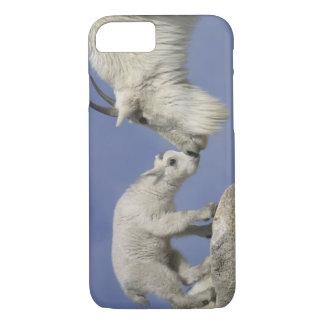 USA, Colorado, Mount Evans. Mountain goat mother iPhone 8/7 Case