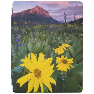 USA, Colorado, Mt. Crested Butte iPad Cover