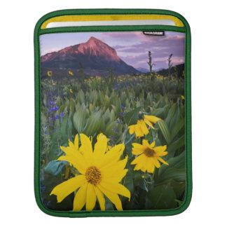 USA, Colorado, Mt. Crested Butte iPad Sleeve