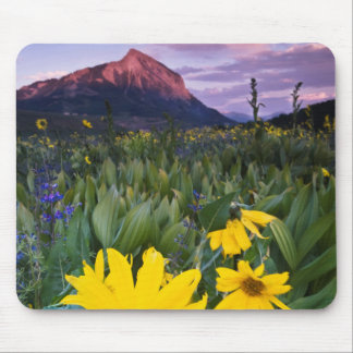 USA, Colorado, Mt. Crested Butte Mouse Pad