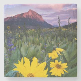 USA, Colorado, Mt. Crested Butte Stone Coaster