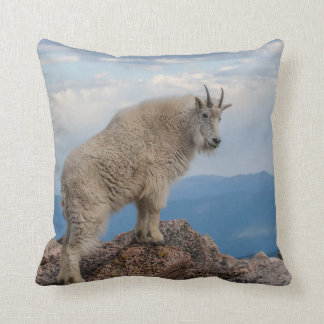 USA, Colorado, Mt. Evans. Mountain Goat Stands Cushion