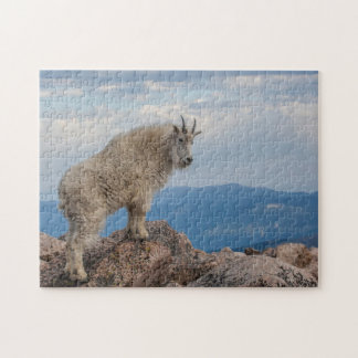 USA, Colorado, Mt. Evans. Mountain Goat Stands Jigsaw Puzzle