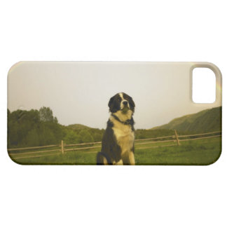 USA, Colorado, New Castle iPhone 5 Case