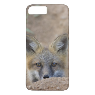 USA, Colorado, Pike National Forest. Shy red fox iPhone 8 Plus/7 Plus Case