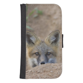 USA, Colorado, Pike National Forest. Shy red fox Samsung S4 Wallet Case