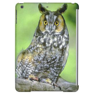 USA, Colorado. Portrait of long-eared owl