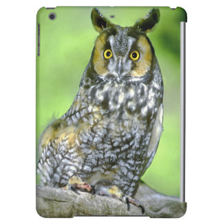 USA, Colorado. Portrait of long-eared owl iPad Air Cover