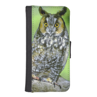 USA, Colorado. Portrait of long-eared owl iPhone SE/5/5s Wallet Case