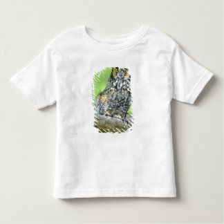 USA, Colorado. Portrait of long-eared owl Toddler T-Shirt