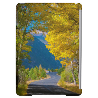 USA, Colorado. Road Flanked By Aspens