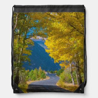 USA, Colorado. Road Flanked By Aspens Drawstring Bag