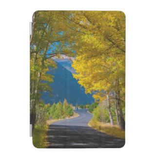 USA, Colorado. Road Flanked By Aspens iPad Mini Cover