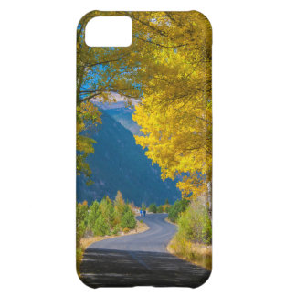 USA, Colorado. Road Flanked By Aspens iPhone 5C Case
