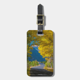 USA, Colorado. Road Flanked By Aspens Luggage Tag