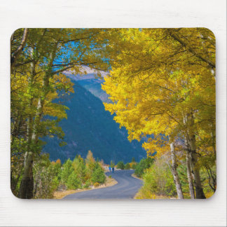 USA, Colorado. Road Flanked By Aspens Mouse Mat