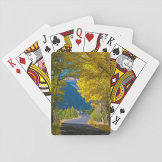USA, Colorado. Road Flanked By Aspens Playing Cards