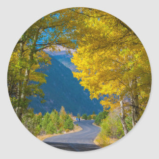 USA, Colorado. Road Flanked By Aspens Round Sticker