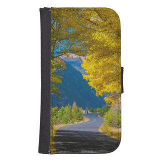 USA, Colorado. Road Flanked By Aspens Samsung S4 Wallet Case