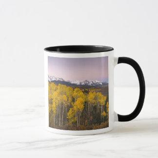 USA, Colorado, Rocky Mountains.  Dawn in the San Mug