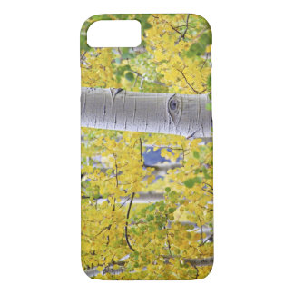 USA, Colorado, Rocky Mountains.  Intimate aspen 2 iPhone 8/7 Case