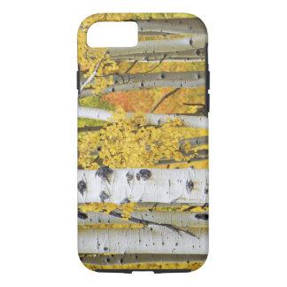 USA, Colorado, Rocky Mountains.  Intimate aspen iPhone 7 Case