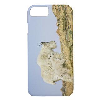 USA, Colorado, Rocky Mountains, Mount Evans, iPhone 8/7 Case