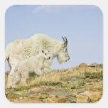 USA, Colorado, Rocky Mountains, Mount Evans, Square Sticker